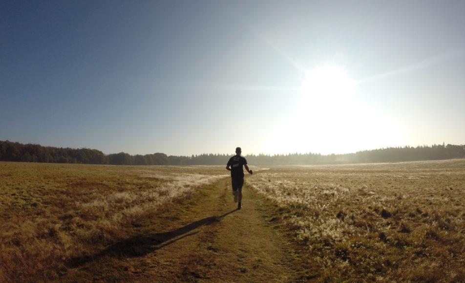 Heuvelrug Track